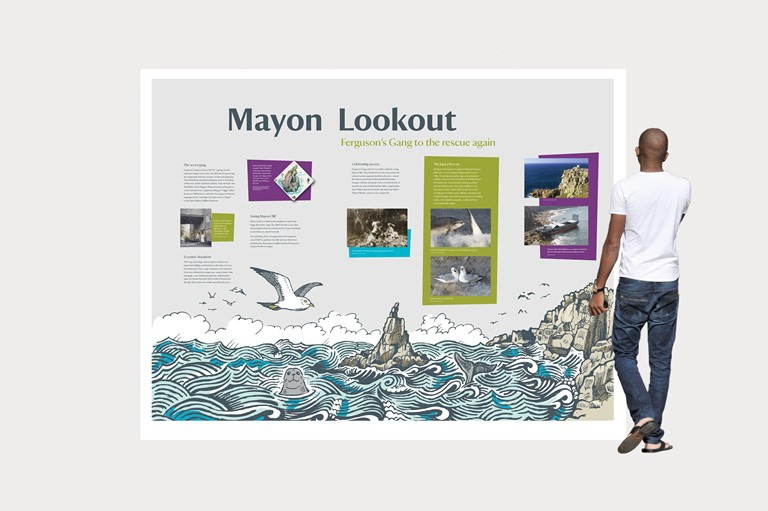 Illustration graphic, seals, seagulls, Design 79 installation at Mayon Lookout in Sennen, Cornwall