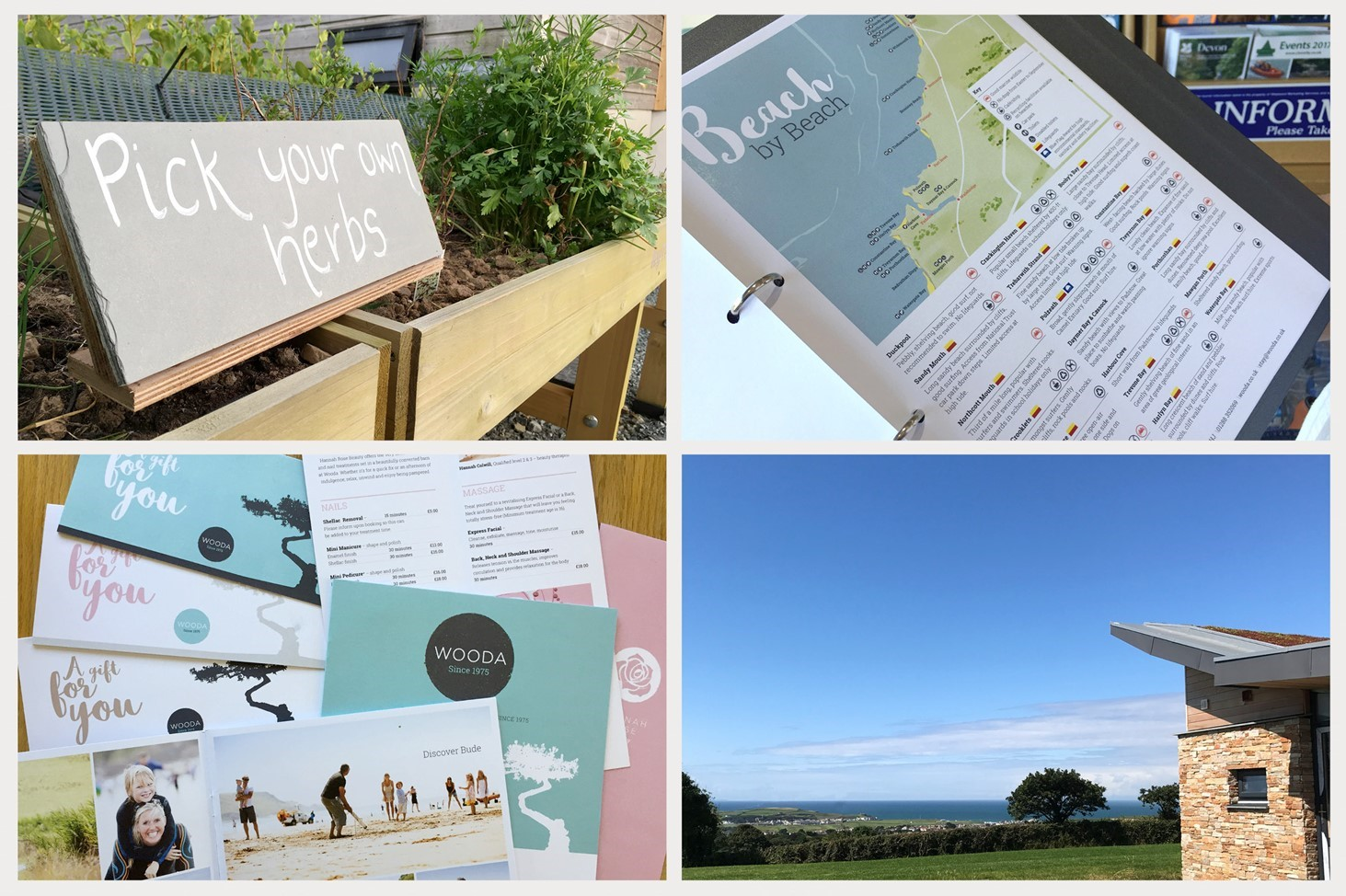 print, Wooda, brand, tree, walking, family, Cornwall, booklet, leaflet, signage, Design79, holiday, sign, map,